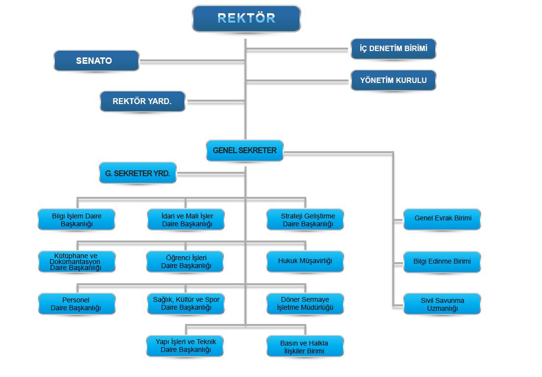 MGÜ İdari Organizasyon Şeması